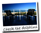 backpackers lodge south africa lodges jeffreys bay south africa