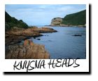 heads tour knysna backpacking south africa backpackers garden route