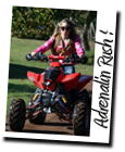 south africa quad bike rides Knysna adventures Garden Route